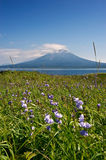 Summer landscape against the backdrop of the volcano Stokap Royalty Free Stock Photo