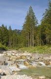 Summer landscape. Alpine landscape in Bavaria, Germany Stock Images