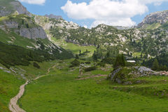Summer landscape in the Alps Royalty Free Stock Photo