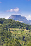 Summer landscape in Apuseni Mountains Royalty Free Stock Photos
