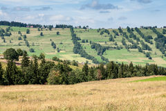 Summer landscape of the area surrounding Zakopane Stock Photography