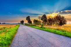 Summer landscape with asphalt road on fields Stock Photo