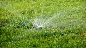 Summer landscape. Automatic watering system for plants and lawn. Water sprinkler showering grass in park.