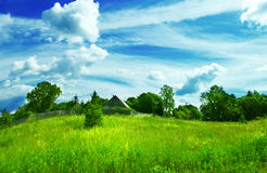 Summer landscape background Stock Photography