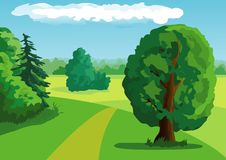Summer landscape. Background with trees Royalty Free Stock Images