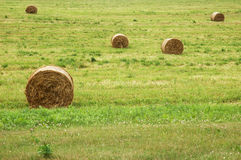 Summer landscape with bale of straw and lakes Royalty Free Stock Photography