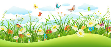 Summer landscape banner Royalty Free Stock Photos