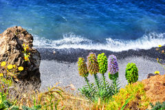 Summer landscape with beach. Madeira island Royalty Free Stock Images