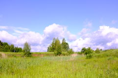 Summer landscape. Beautiful summer landscape with blue sky and white clouds Stock Photos