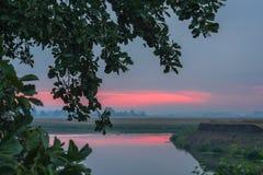 Summer landscape beautiful pink sunrise on the river Stock Image