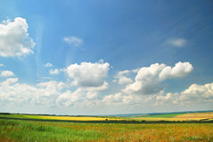 Summer landscape with the beautiful sky Royalty Free Stock Images