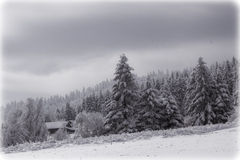 Summer  landscape. Beautiful winter landscape in europe Royalty Free Stock Photos