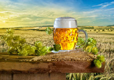 Summer Landscape with Beer Glass. And Hops Stock Image