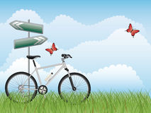 Summer landscape with a bike. Vector illustration Royalty Free Stock Images