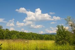 Summer landscape with blue cloudy sky Stock Image