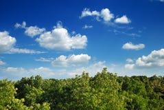 Summer landscape on blue sky background Royalty Free Stock Image