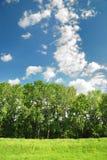 Summer landscape on blue sky background Royalty Free Stock Images