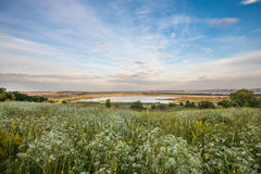Summer landscape. Blue sky with clouds, field with wite flowers in front, lake and river behind Stock Images