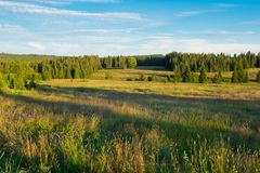 Summer landscape in Bohemian Forest. Czech royalty free stock images