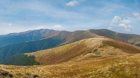 Summer landscape in Carpathian mountains Royalty Free Stock Photography