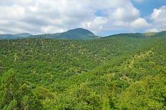Summer landscape of Caucasus Mountains Stock Images