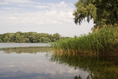 Summer landscape. Clouds reflected in the river Stock Photography