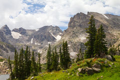 Summer Landscape in Colorado Mountains Royalty Free Stock Photo