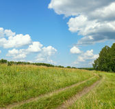 Summer landscape with a country-road Royalty Free Stock Image
