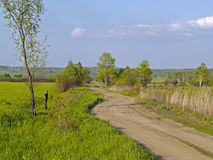 Summer landscape with a country road Royalty Free Stock Photography