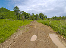 Summer landscape with a country road Stock Image