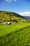 Summer landscape in the countryside Royalty Free Stock Photos
