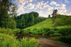 Summer landscape in the countryside Royalty Free Stock Image