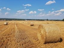 Summer landscape in the countryside royalty free stock photography
