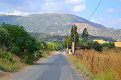 Summer landscape in Crete. Royalty Free Stock Image