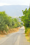 Summer landscape in Crete. Stock Photography