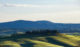 Summer landscape with the cypress avenue, Tuscany, Ita Royalty Free Stock Photography