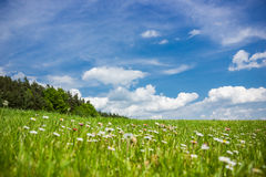 Summer landscape. In Czech Republic Royalty Free Stock Images