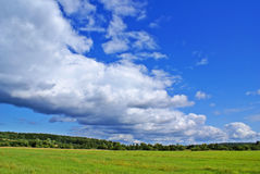 Summer landscape d. Summer landscape with cloudy sky, green grass and trees Stock Photo