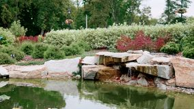 Summer landscape design: artificial waterfall with pond and plants and flowers stock video