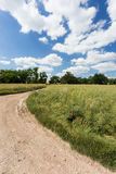 Summer landscape with dirt road Royalty Free Stock Photos