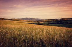 Summer landscape at evening with mountain hills an royalty free stock image