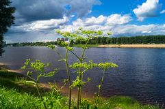 Admirable view of the stormy sky over the Volga river and its picturesque shores. Russia regional center, the city of Tver. Royalty Free Stock Image