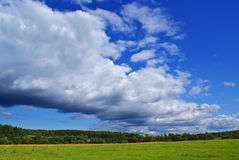 Summer landscape f. Summer landscape with cloudy sky, green grass and trees Stock Image
