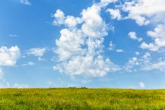 Summer landscape, field with flowers and sky with clouds.  stock image
