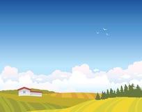 Summer landscape - field, house, clouds, sky. Summer  landscape with green field, forest, house and cloudy blue sky. Vector nature illustration Stock Photo