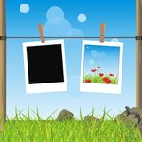 Summer landscape of a field and photo Royalty Free Stock Photography