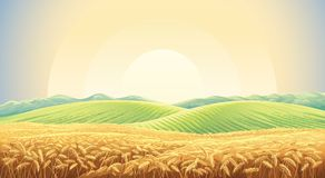 Summer landscape with field wheat. Summer landscape with a field of ripe wheat, and hills and dales in the background Stock Photography