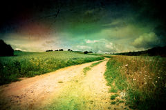 Summer landscape. With a field of toned style lomography Royalty Free Stock Image