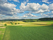 Summer landscape. With fields and meadows Stock Photos