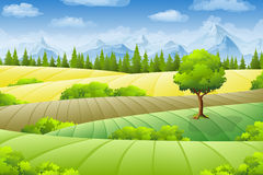 Summer landscape with fields. Trees and mountains Royalty Free Stock Photos
